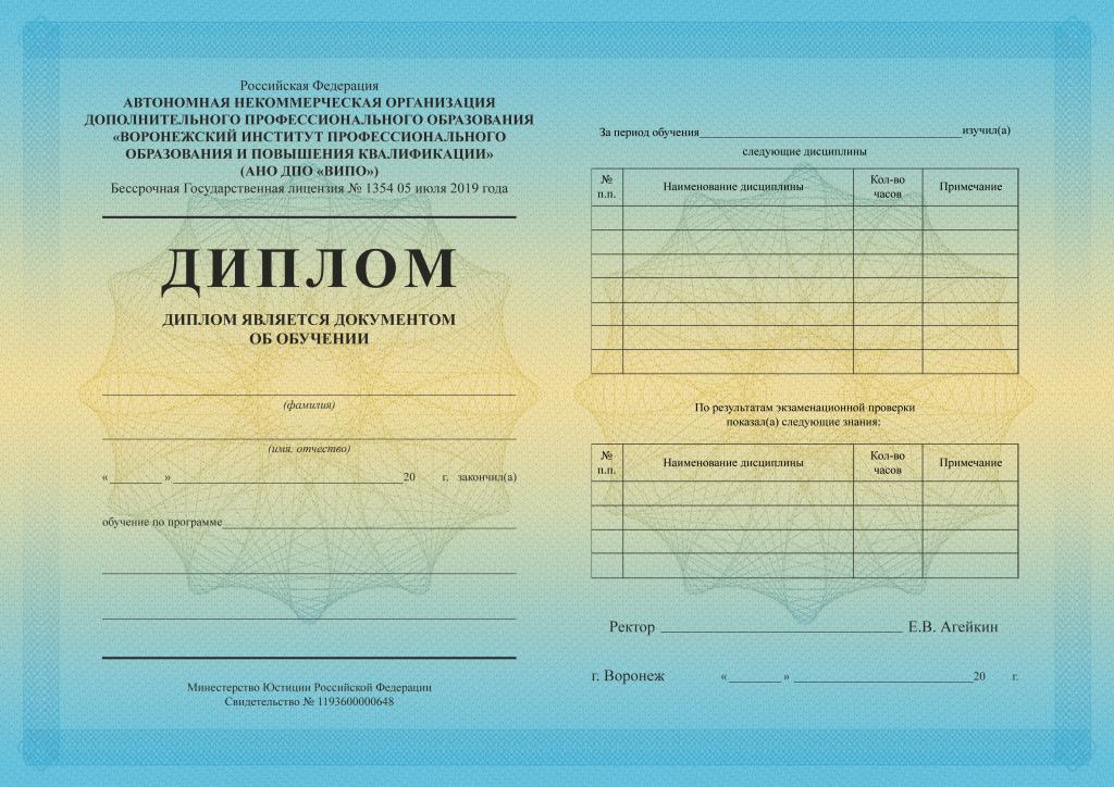 Диплом ВИПО-min